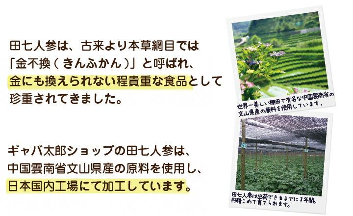 田七人参説明1