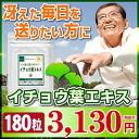 Ginkgo-3sam