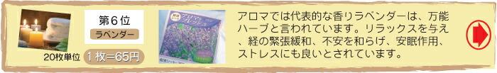 足裏シートランキング No.6