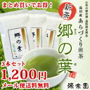 100 g of three leaf (さとのは) sets of the making of amount-limited ◎ new tea ◎ Shizuoka Shimada product fault green tea of medium quality volost