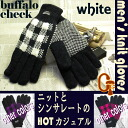 Men's knitted wear gloves thinsulate Buffalo check pattern gingham ♪ natural white fs3gm