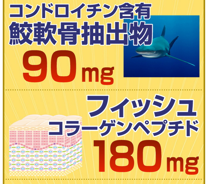 約半年分たっぷり大容量グルコサミン+コンドロイチン+コラーゲン540粒 コラーゲンペプチド