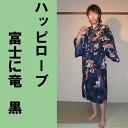 H15fujiryu_bk