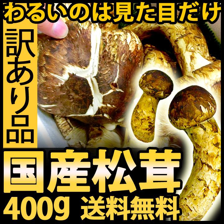訳あり国産松茸 400g(つぼみ・開き混在)