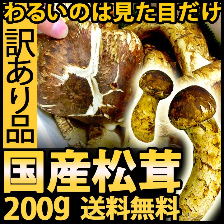 訳あり国産松茸 200g(つぼみ・開き混在)