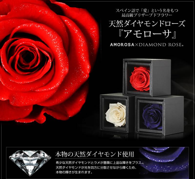 天然ダイヤモンド0.12ct ダイヤモンドシェイプ18金ホワイトゴールドネックレス-6