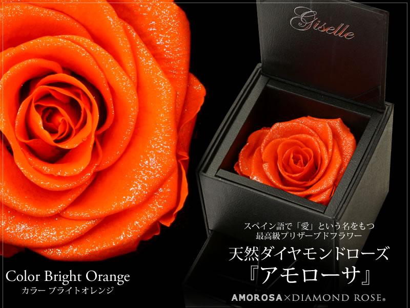 『天然ダイヤモンドローズのジュエリーケース ブライトオレンジ』-2