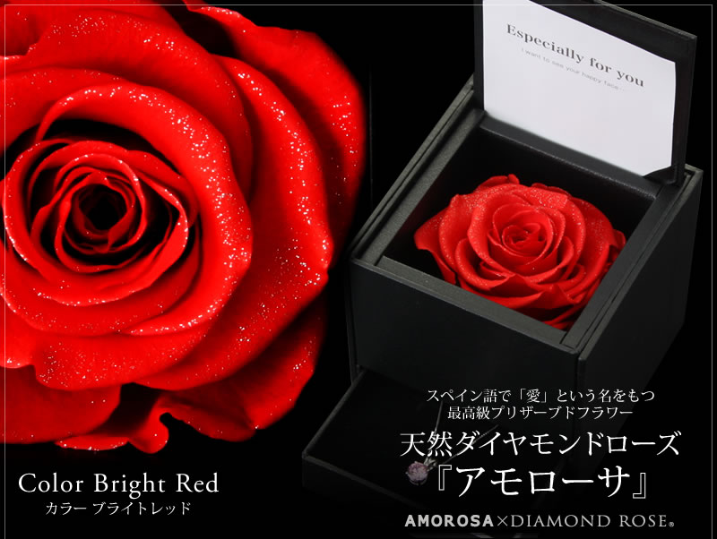 『天然ダイヤモンドローズのジュエリーケース ブライトレッド』-2