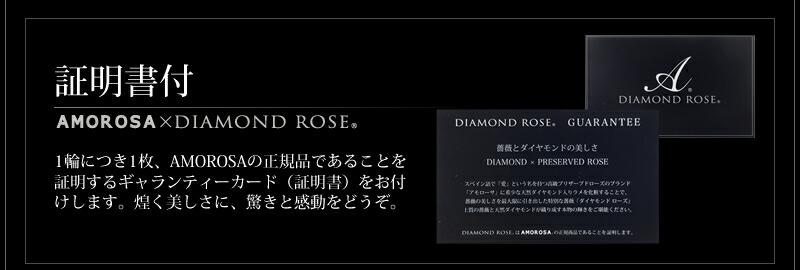 天然ダイヤモンド0.12ct ダイヤモンドシェイプ18金ホワイトゴールドネックレス-9