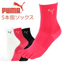 PUMA ( PUMA ) ladies ' five finger-fitting arch support Marathon crew socks 3562-227 sybp smtb-k all points 10 times in!
