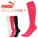 PUMA ( PUMA ) ladies stage floor wearing pressure design five fingers and Arch supports fit Marathon socks 3562-228 sybp smtb-k all points 10 times in!