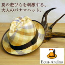 [excellent case free of charge] excellent ad re-Arno PanamaHat(excellent ad re-Arno)/ Panama / straw hat / men / 【 comfort gift_ case 】【 blind 】 【 ecua andino 】 【 RCP 】 fs2gm 【 10P17May13 】) made in checked pattern Ecuador