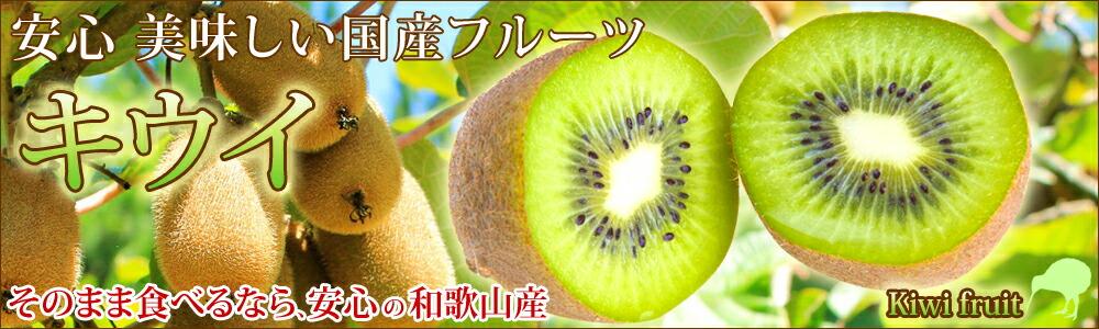 和歌山県産「みかん」2016年度販売開始!産地直送します