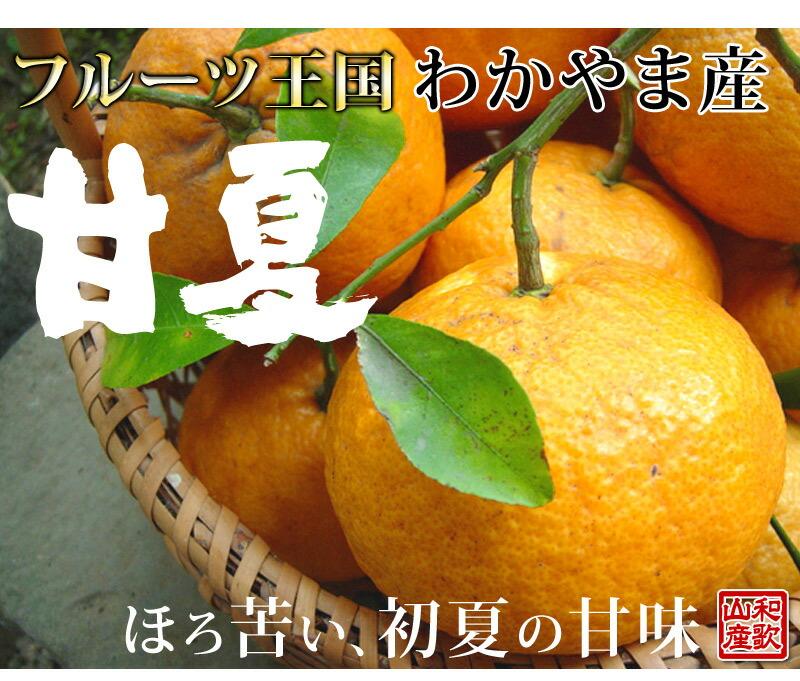 独特の苦味と、サッパリ甘味、初夏、旬の果物