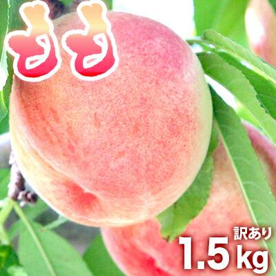 わかやま県産「桃」もも 1.5kg