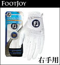 FOOTJOY golf glove NANO LOCK TOUR white fgnt13lh WT