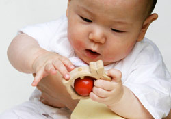 赤ちゃんが初めて触れる木のおもちゃ