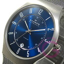SKAGEN ( Skagen ) 233 XLTTN ultra-slim titanium mesh mens watch