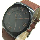 SKAGEN (scar gene) SKW6040 PERSPECTIV/ perspective leather belt black X brown men watch watch