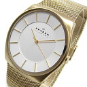 SKAGEN (scar gene) SKW6069 KLASSIK/ classical music stainless steel mesh belt gold men watch watch