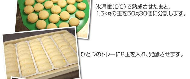 氷温庫(0℃)で熟成させたあと、1,5kgの玉を50g30個に分割します。 ひとつのトレーに8玉を入れ、発酵させます。