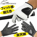 All コンフィデンス good fitting golf glove CFG-224 weather types