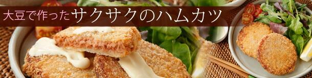 大豆ハムカツ