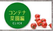 有機無農薬 家庭菜園栽培