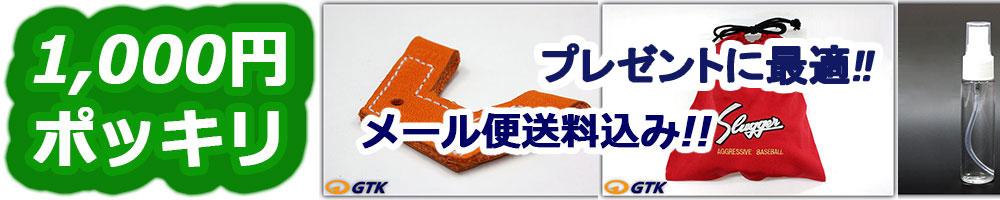 1000円ポッキリ送料無料