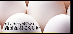 安心・安全の生みたて卵