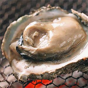 牡蠣にシャブリは良く合います♪