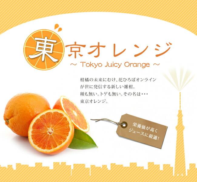 東京オレンジ