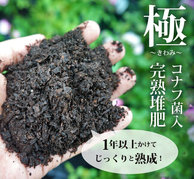 堆肥 土壌改良