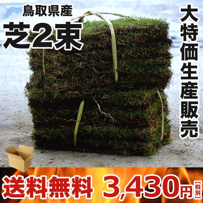 芝生の通販