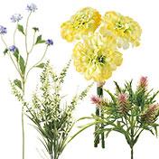 草原の小花