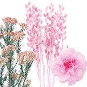 ピンク系小花