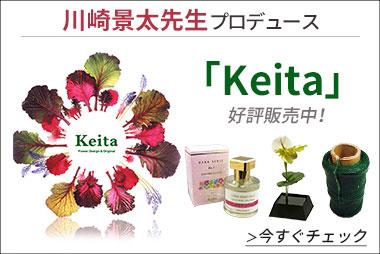 「Keita」販売開始!