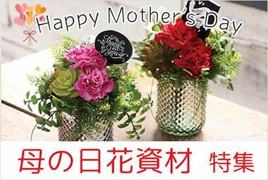 母の日花資材特集