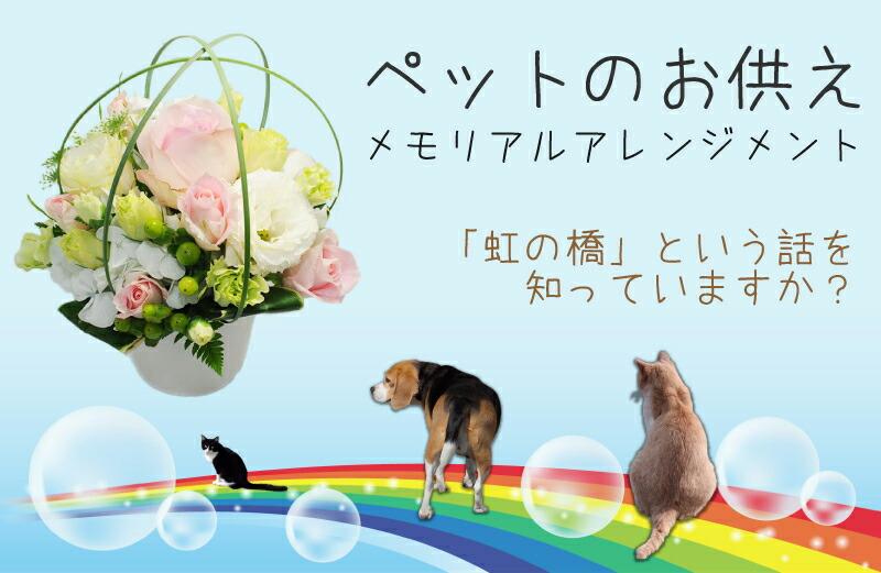 ペットのお供えメモリアルアレンジメント、「虹の橋」というお話を知っていますか?