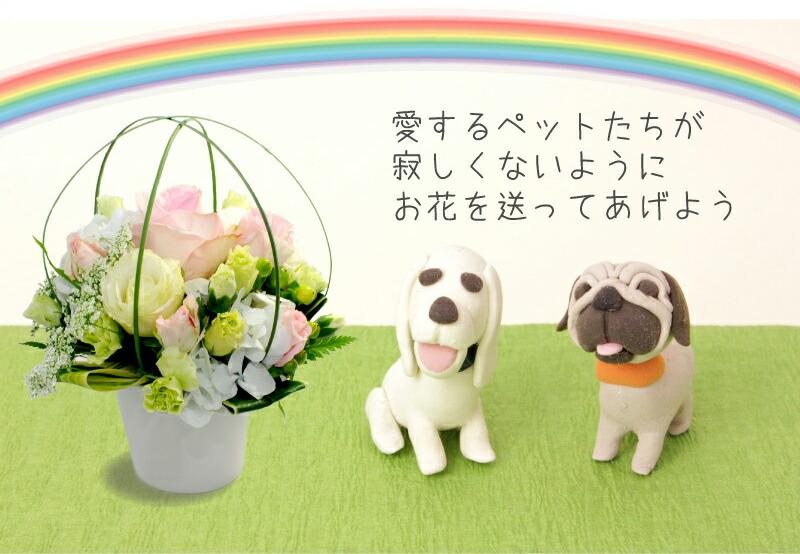 愛するペットたちが寂しくないようにお花を贈ろう