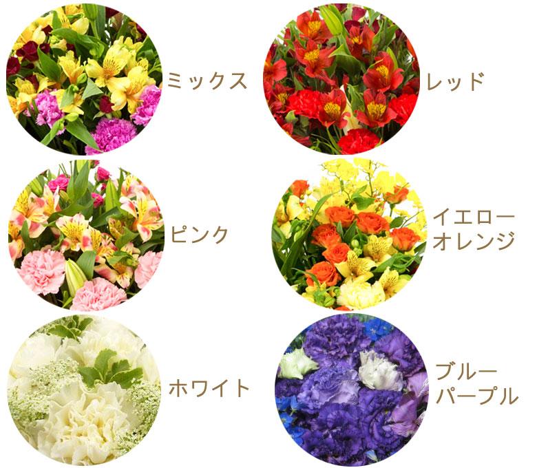 お花の色はミックス、レッド系、ピンク系、イエロー・オレンジ系、ホワイト系、ブルー・パープル系からお選びいただけます
