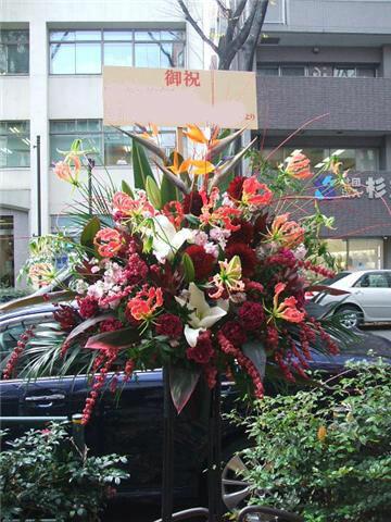 赤の目立つ開店花