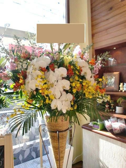 俳優・女優・タレント出演祝い花