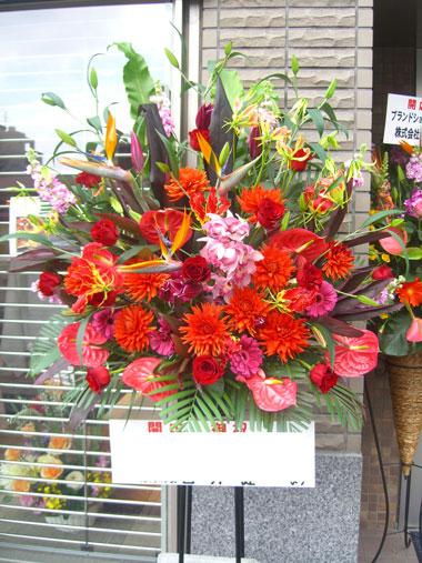 取引先企業様への移転祝い花