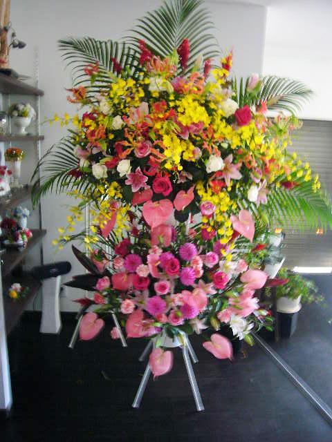 俳優・女優・タレント、公演祝い、出演祝い花
