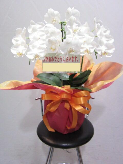 ビジネス祝い花