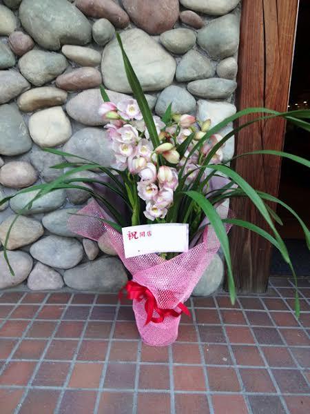 花鉢 送料無料