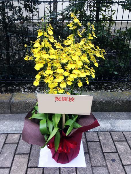 周年記念 花鉢