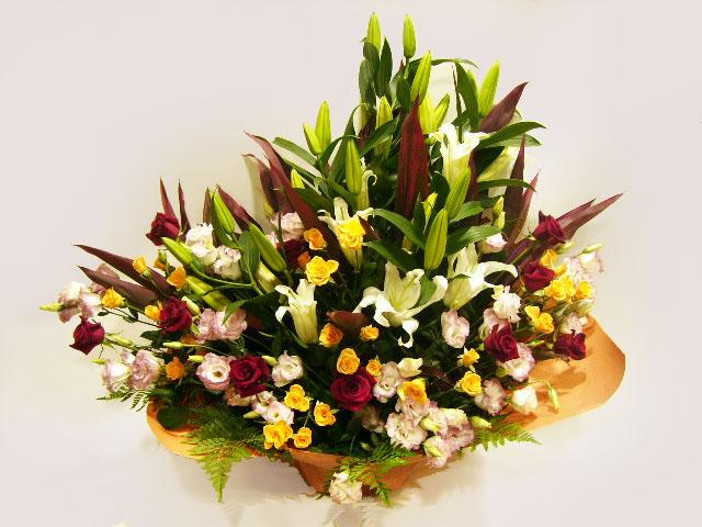 俳優・女優・タレント舞台祝い、主演祝い、出演祝い花