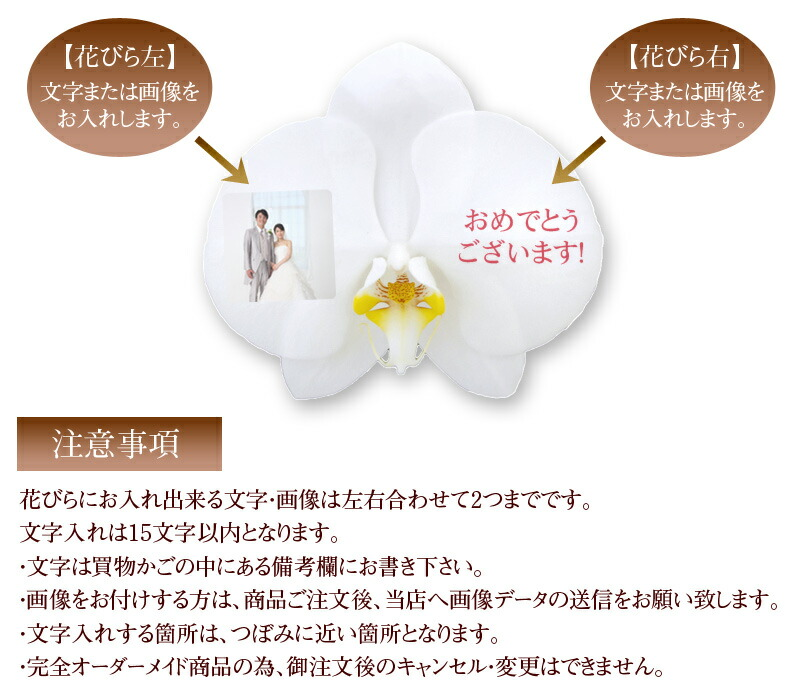 Permalink to 誕生 日 メッセージ 本